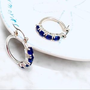 Fashionista21 Jewelry - NIB Silver Tone Blue Rhinestone Earrings